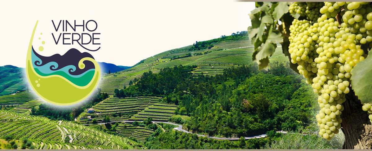 Weinberge in Vino Verde