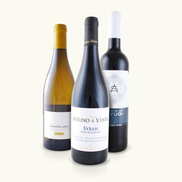 Herbstweinpaket Rundreise